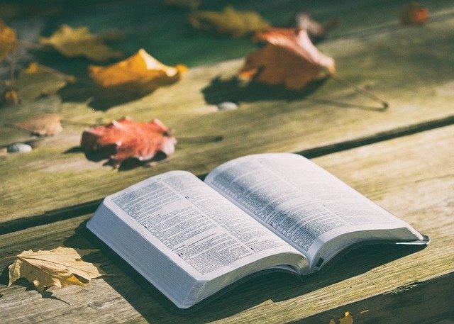 Pożyczanie książek innym osobom